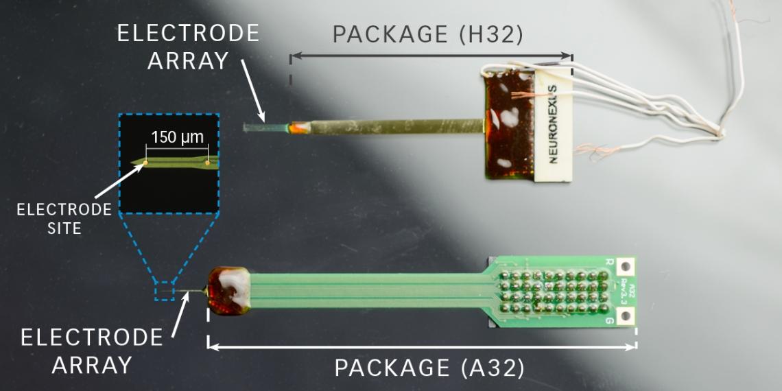 NeuralProbes_Diagram2.jpg