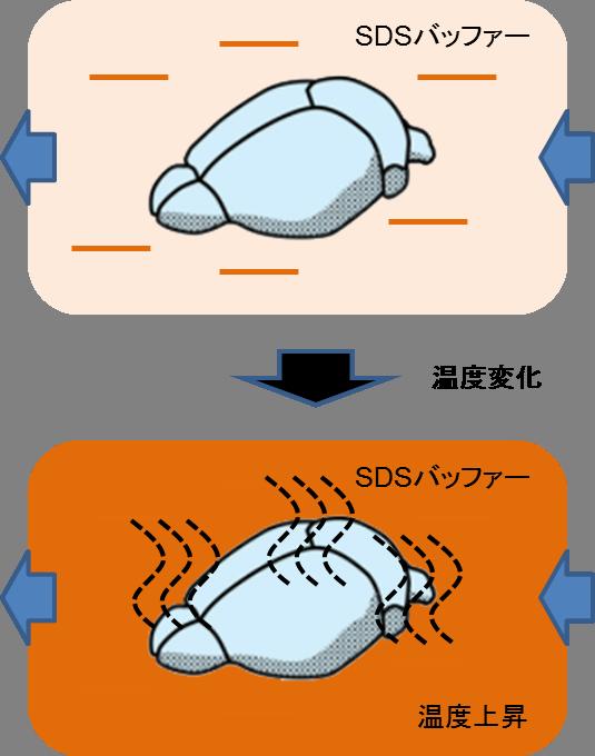 SDS_temp_up.png